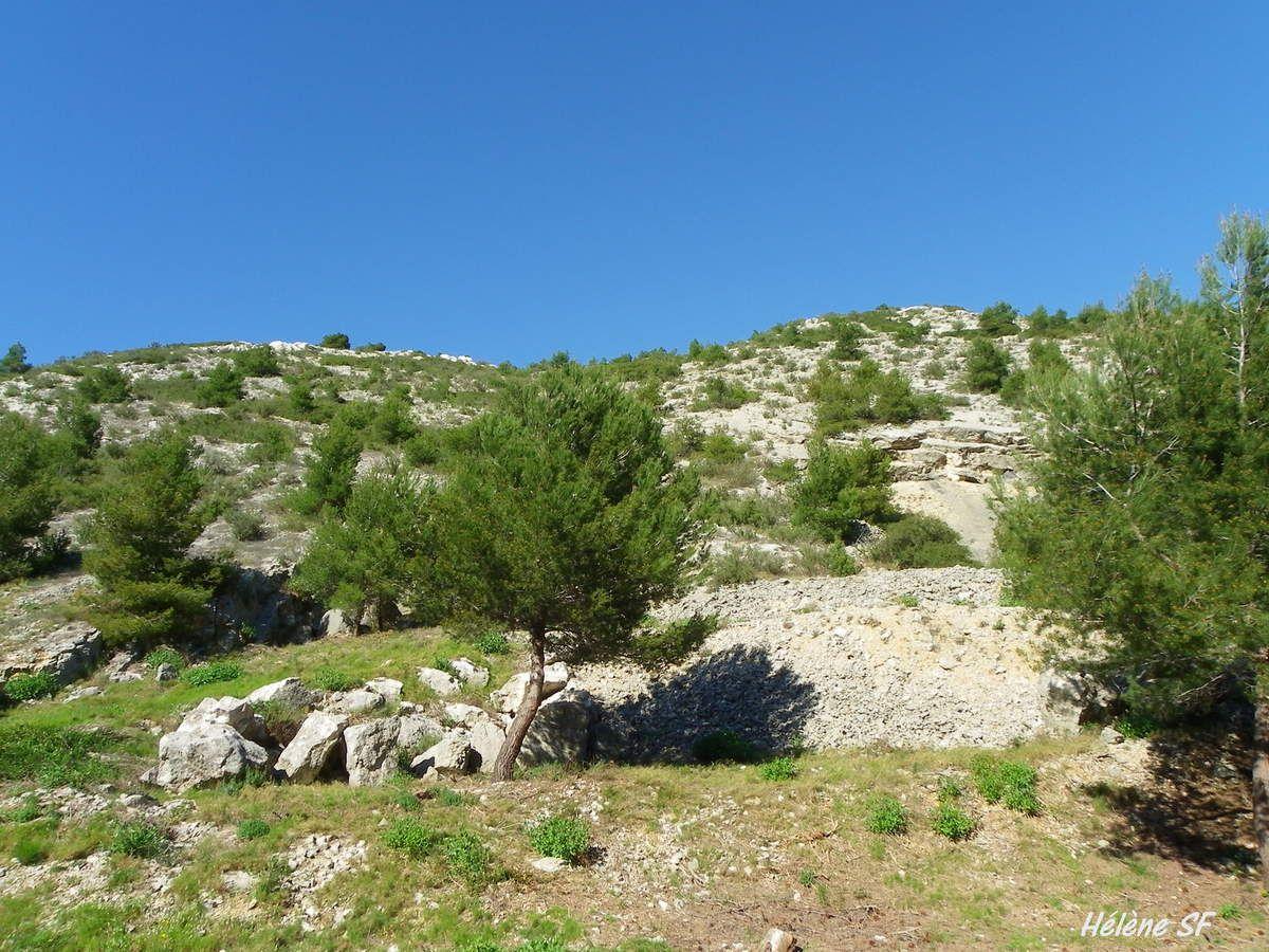 Balade dans les calanques de Niolon et la Vesse
