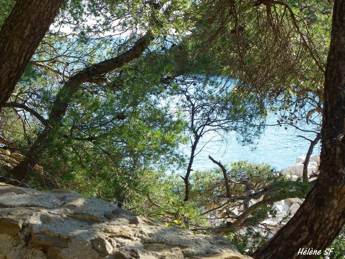 Balade randonnée dans la calanque de Méjan, côte bleue