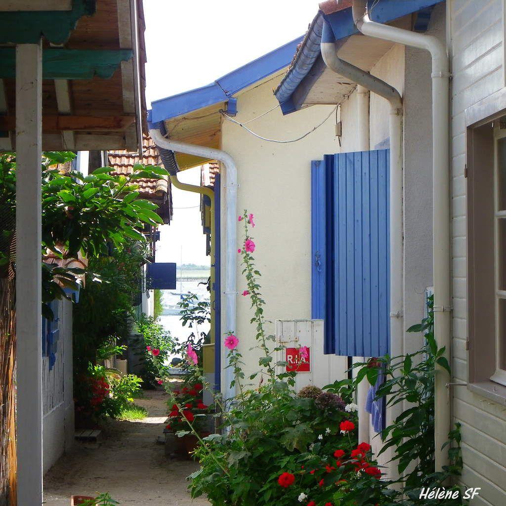 Petit trésor: l'Herbe au Cap Ferret, adorable village de pêcheurs
