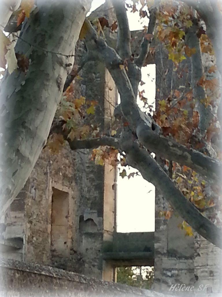 Balade à la Tour d'Aigues: son château au soleil couchant