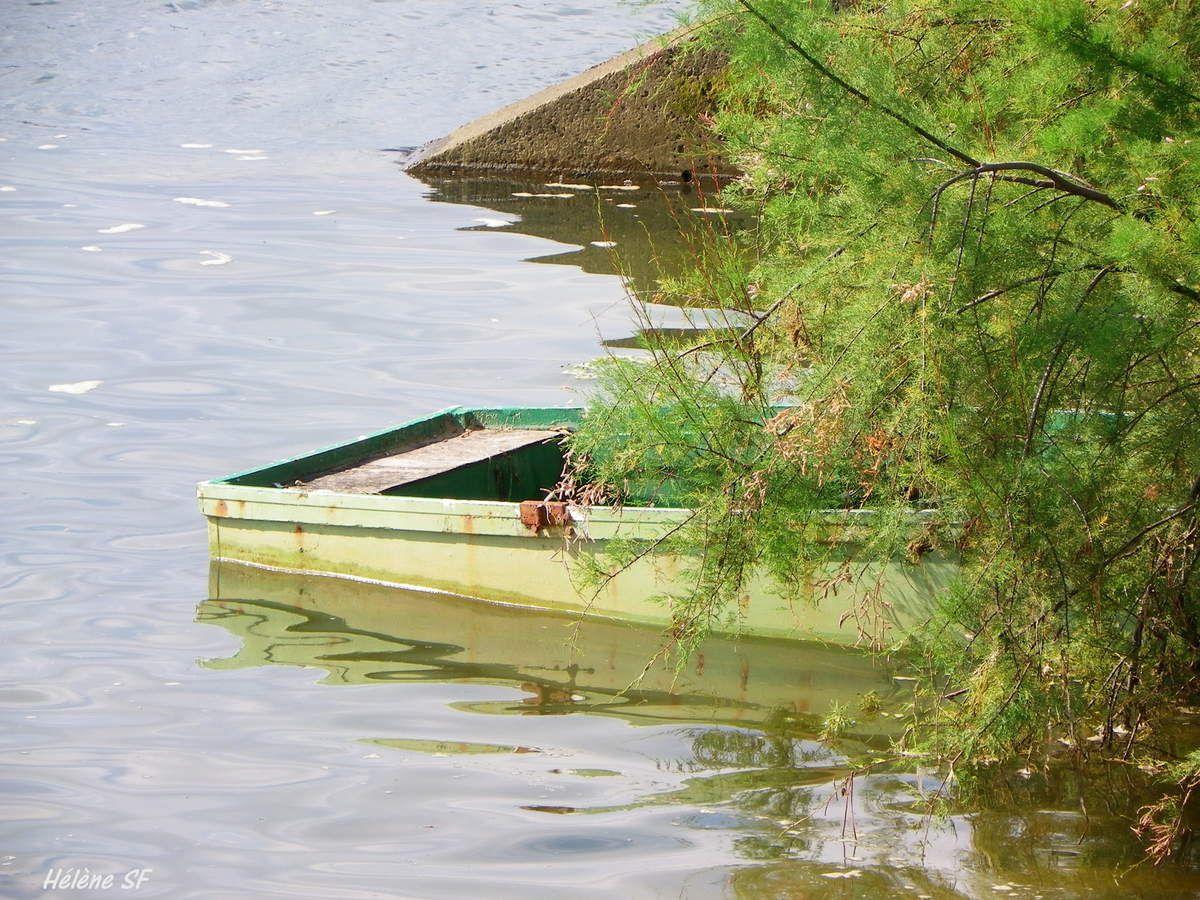 Balade autour du lac de Port d'Albret, encore de jolies barques!