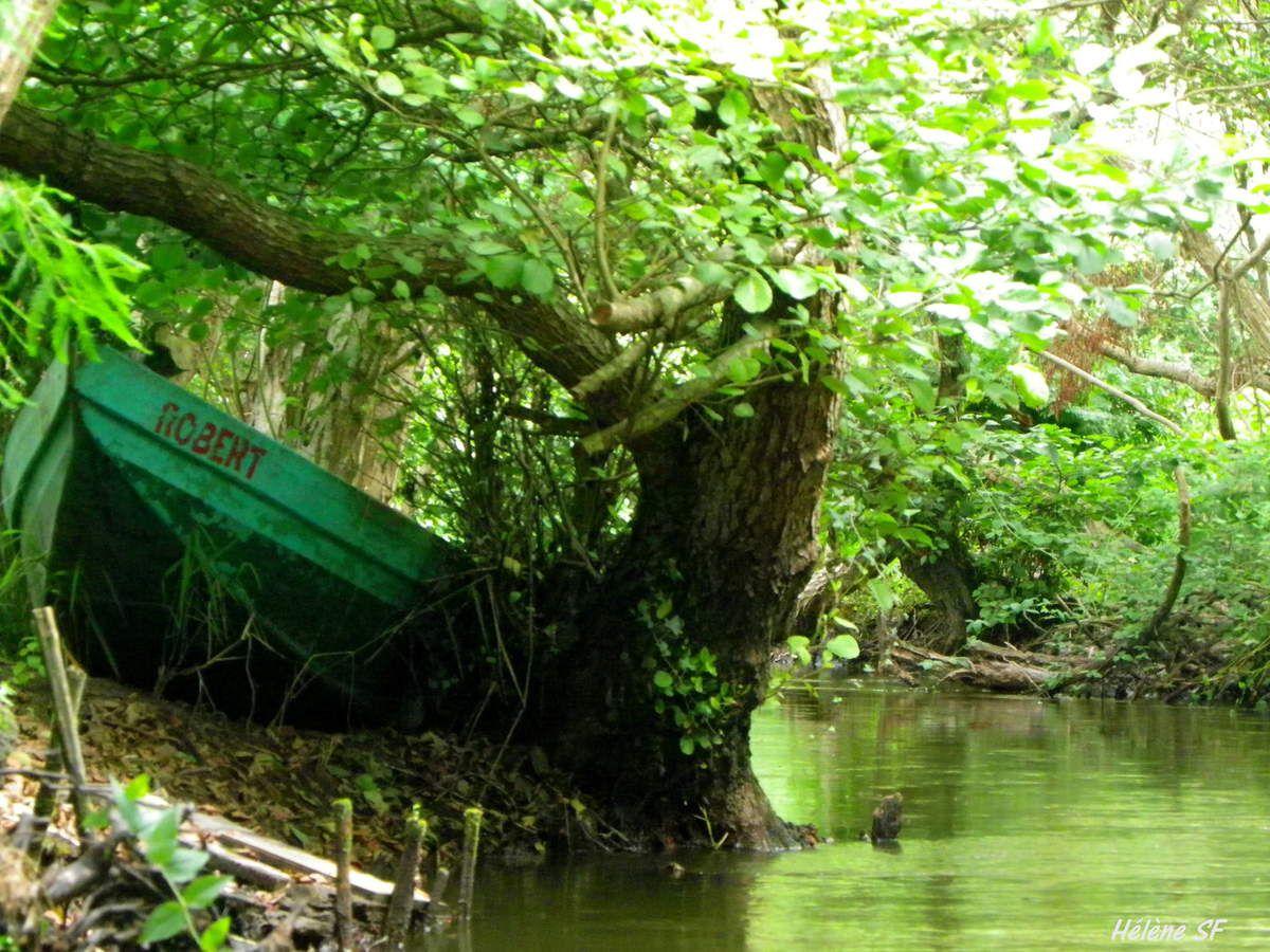 Les barques colorées du courant de Huchet