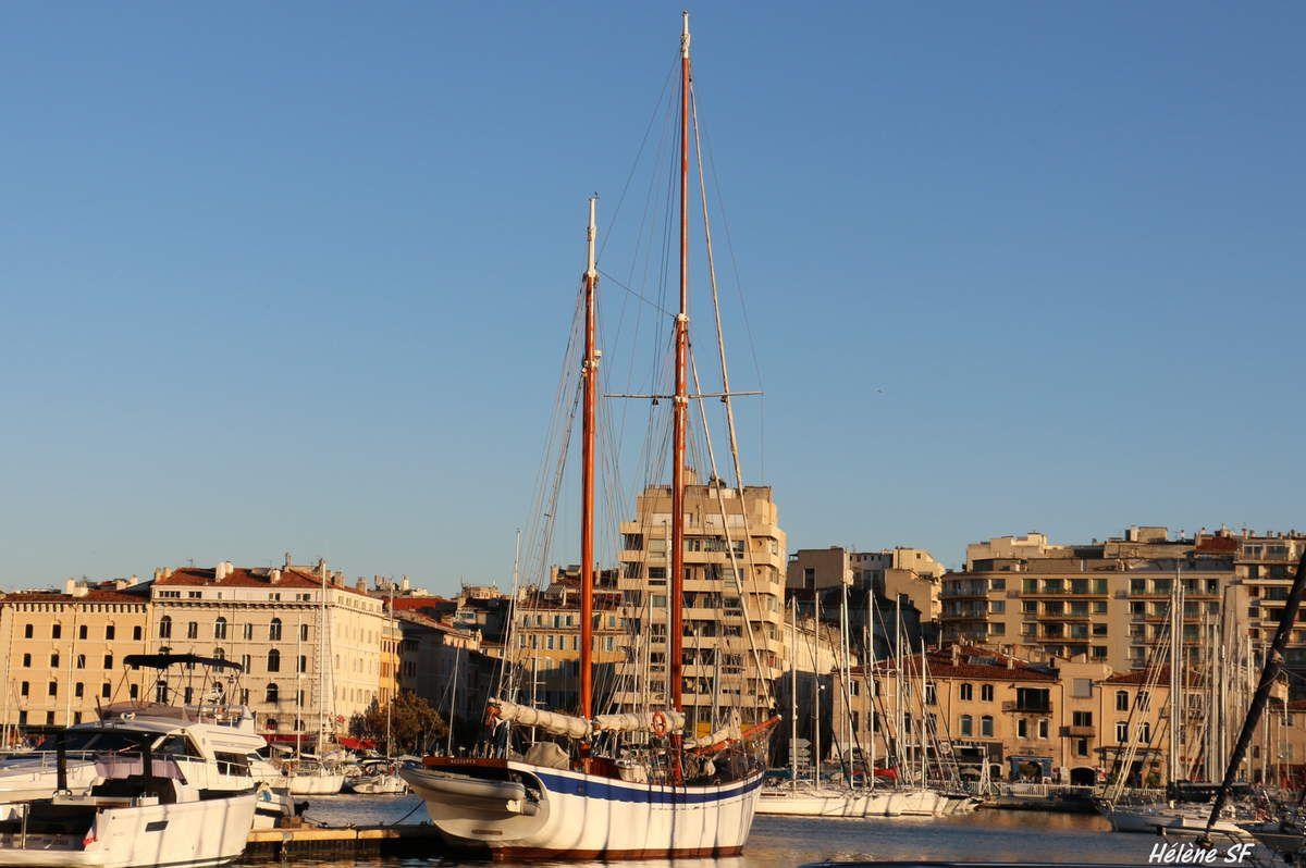 Marseille: les Pointus et les autres voiliers du Vieux-Port