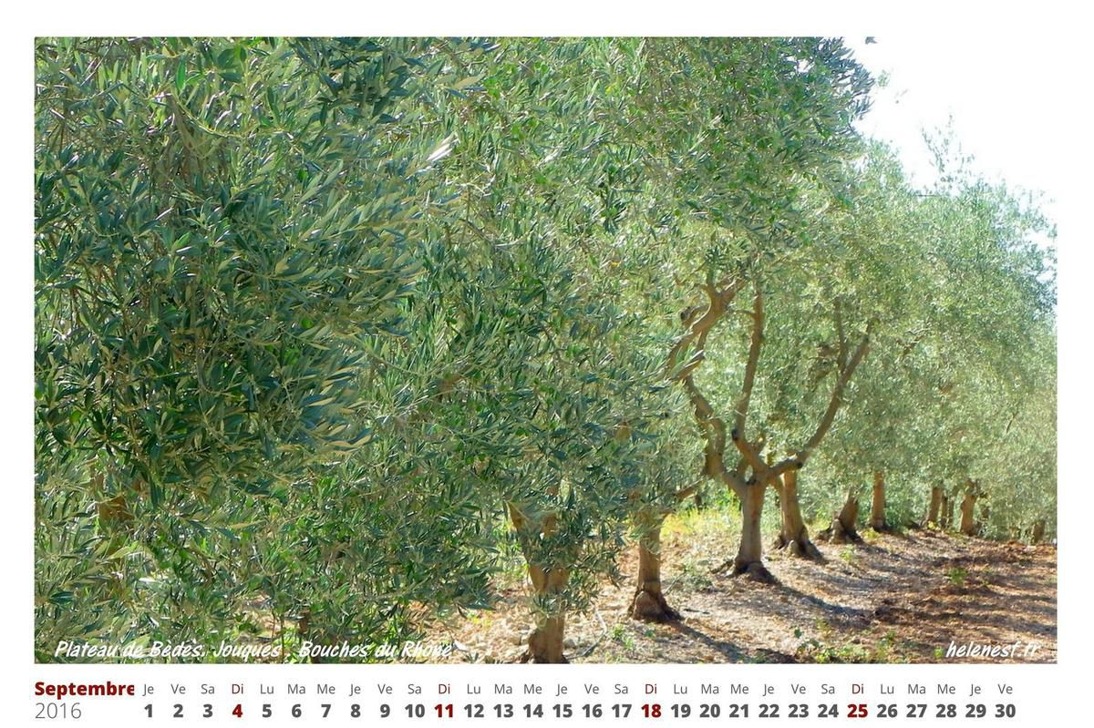 Calendrier 2016 par mois à imprimer avec des photos aux Couleurs de Provence