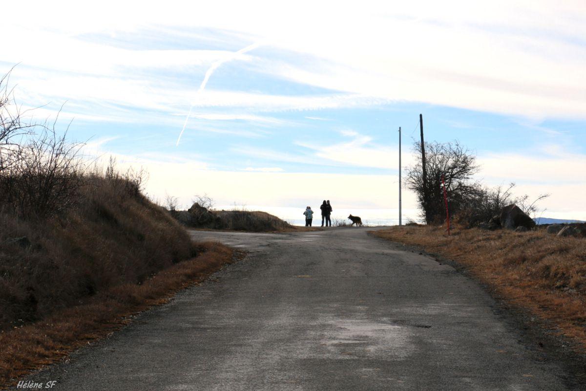 """l'arrivée au col du Collet, là, il faut prendre la chemin sur la gauche """"tour du Faudon"""". Voici un lien vers la vue qu'on a de cet endroit:"""