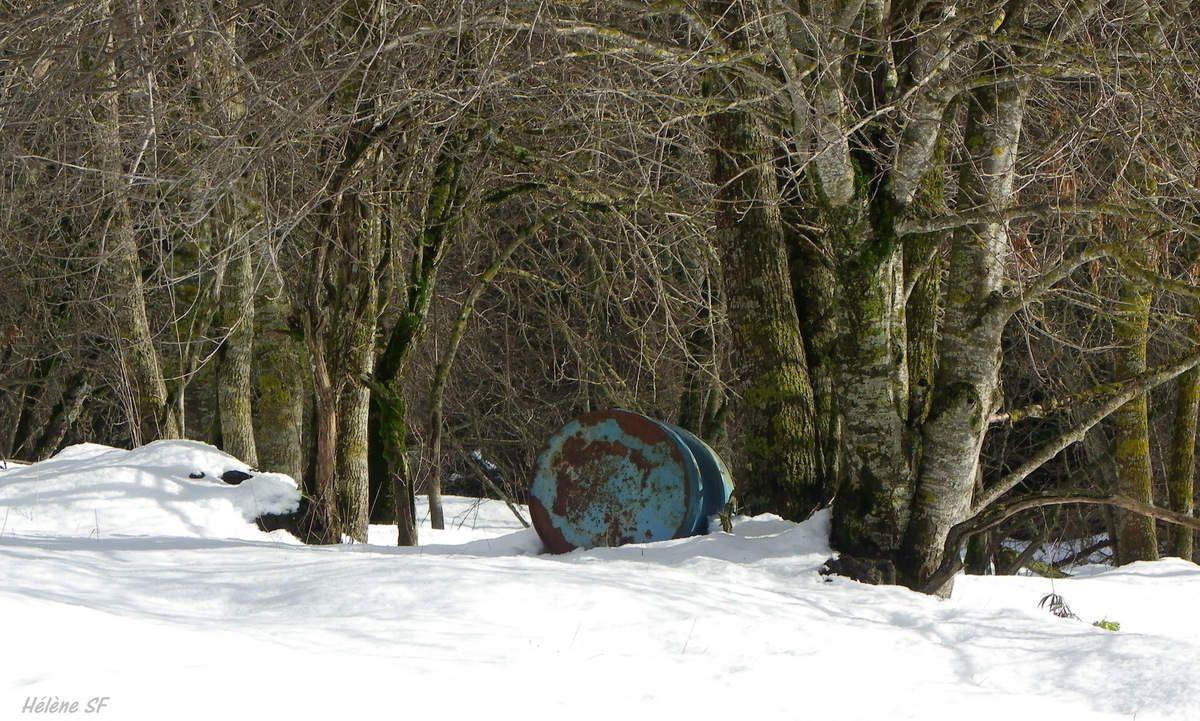 Ancelle, randonnée magique en raquettes, 5 km le long du torrent la Rouanne