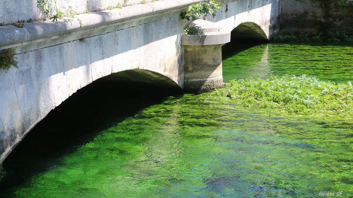 Que voir et faire à Fontaine de Vaucluse? Visite détaillée du village et du site en images