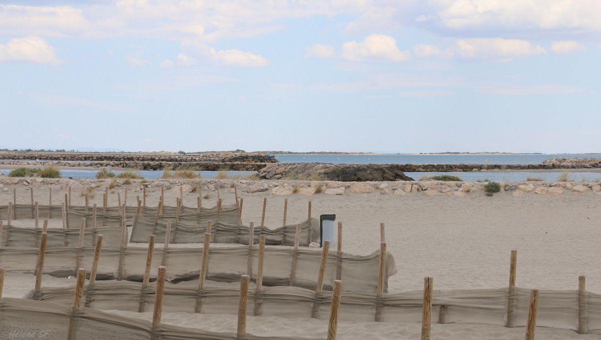 Paysages magiques de la côte sauvage aux Saintes Maries de la Mer...