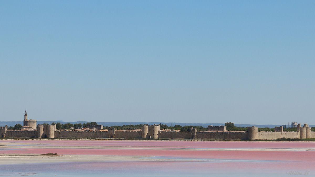 Aigues-Mortes: un incontournable et sa preuve en images