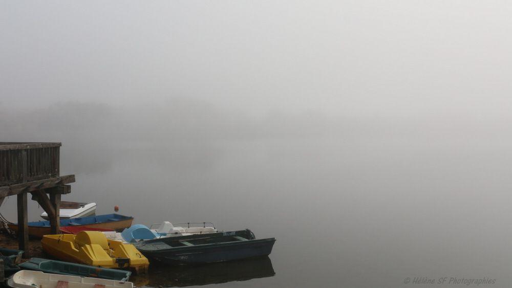 &quot&#x3B;Effet'mer&quot&#x3B; Photos reposantes de paysages brumeux et réflexions autour de l'éphémère, en ces temps dits &quot&#x3B;de guerre&quot&#x3B;...