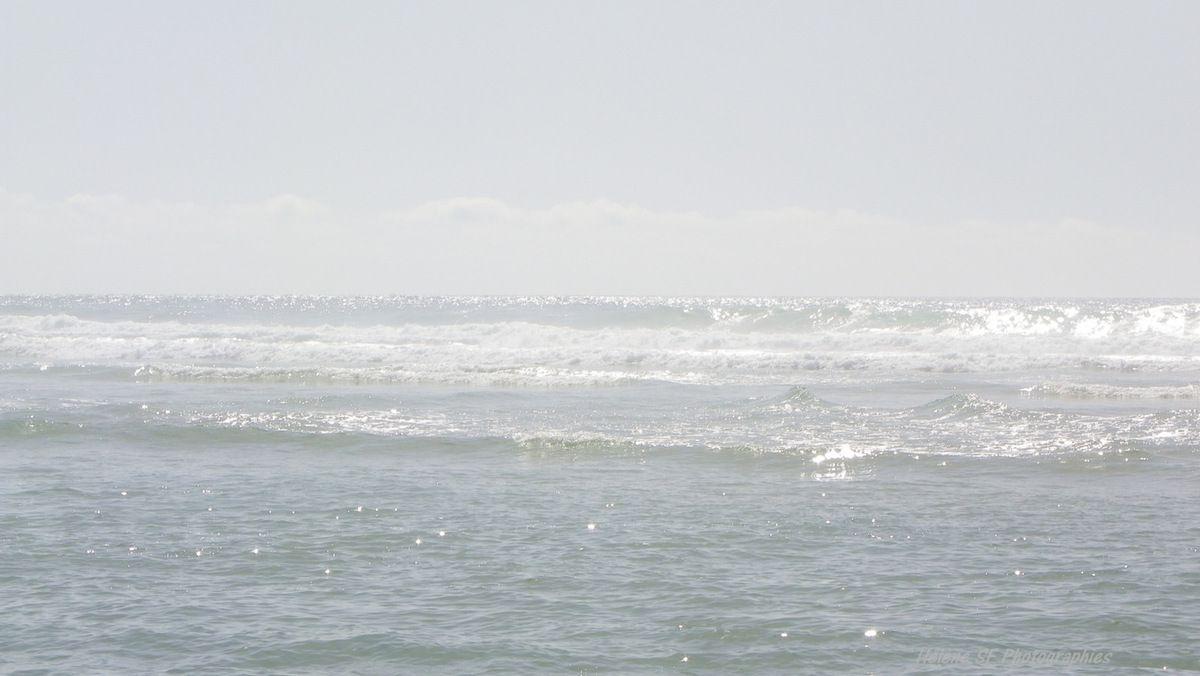 Photos reposantes de vagues pour rêver ou pour des fonds d'écran