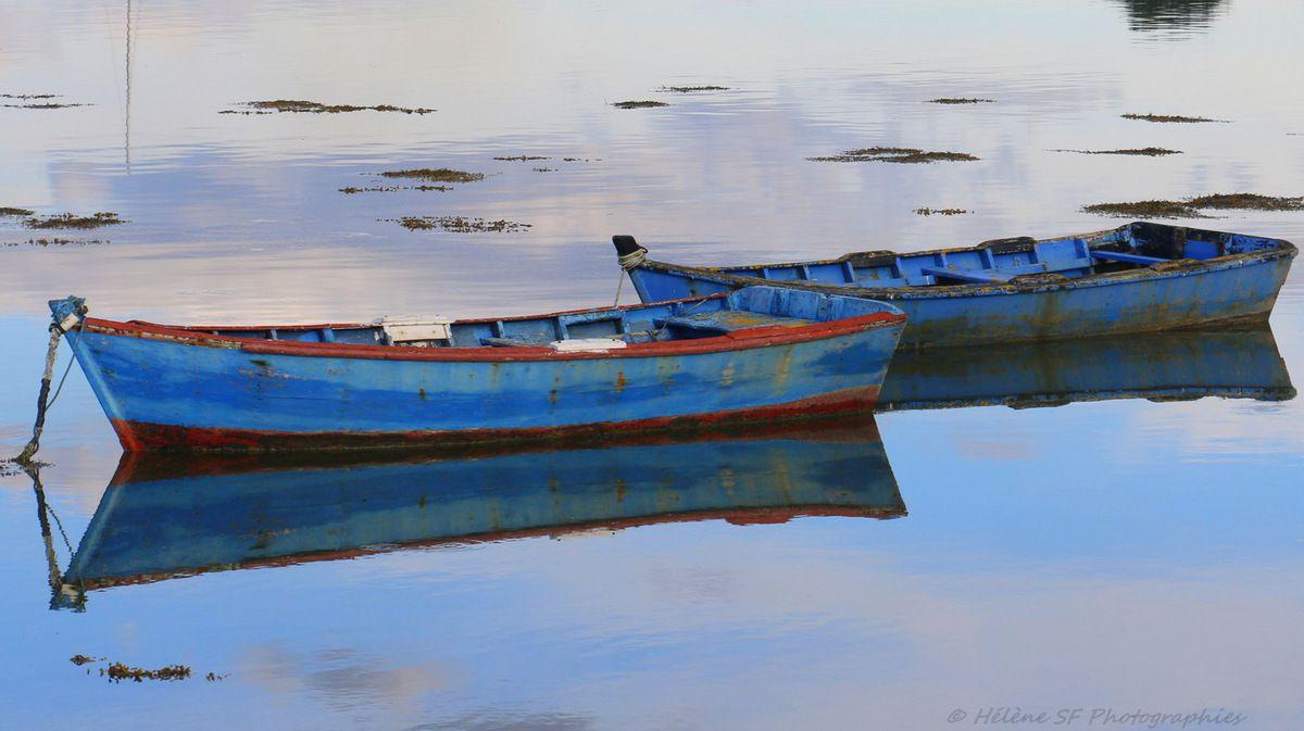 Barques à Saint Cado