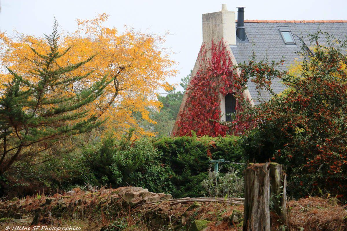 L'île aux Moines: randonnée familiale en automne à la découverte de l'atmosphère si particulière de cette île magique