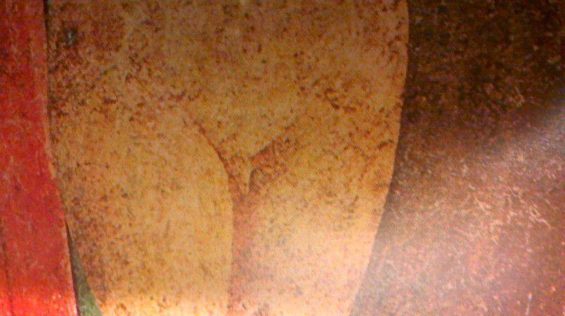 Fig.2a,  Ingrandimento dell'inguine della bambina prima del restauro