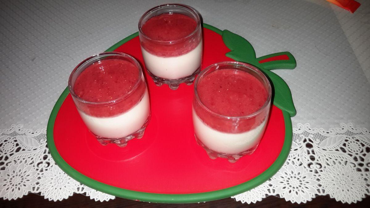 Panna cotta mit Kokosraspeln und pürrierten Erdbeeren  (Low carb )