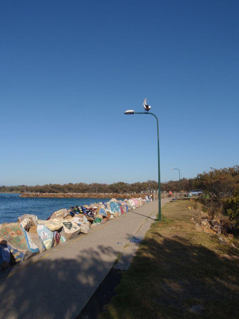 Nambucca Heads... Station balnéaire typique australienne. Très souvent on voit des pélicans... Le preuve...