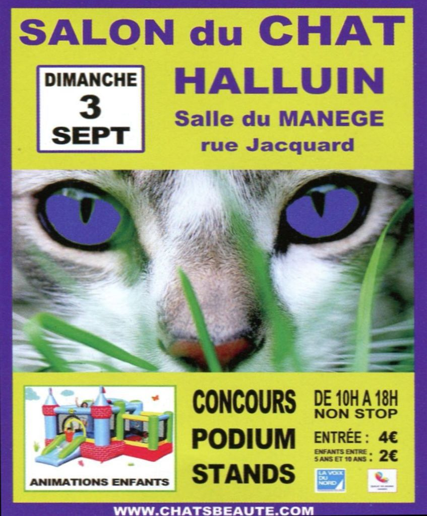 1er Salon du Chat à Halluin, le 3 Septembre 2017.