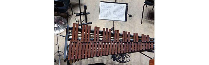 Vue plongeante sur le xylophone