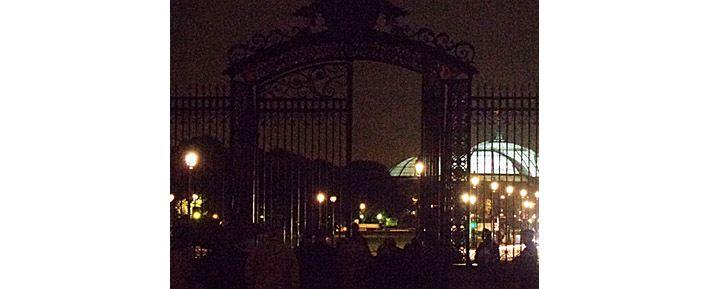 La grille des Invalides, et au loin, le Grand Palais