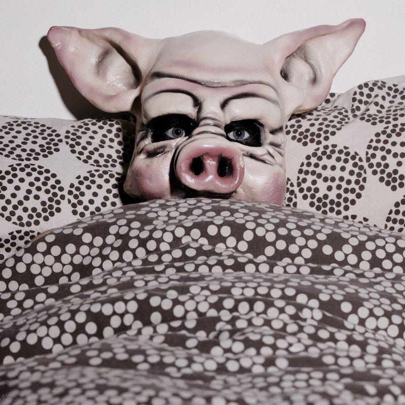 2011/12/27 Ne la prenez pas pour une cochonne !