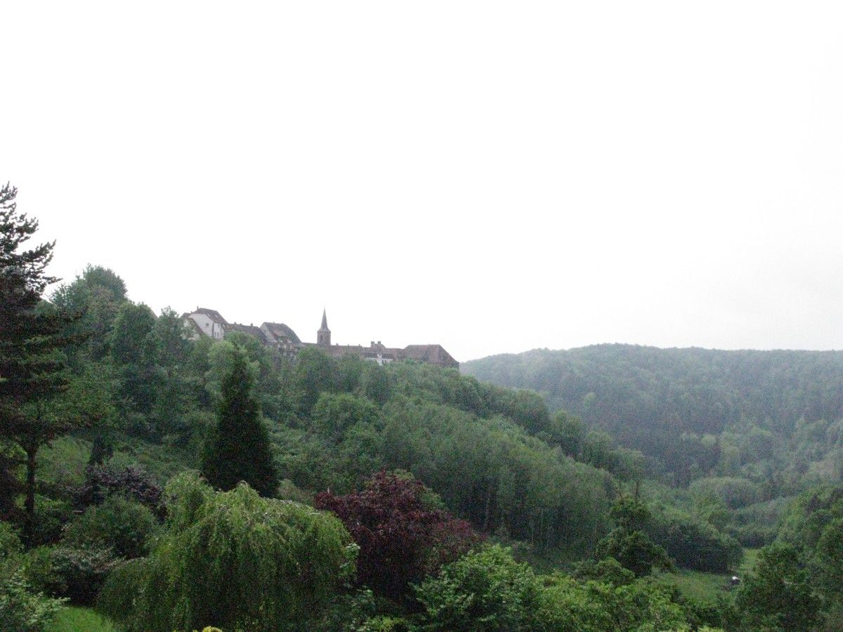 Au Nord des Vosges