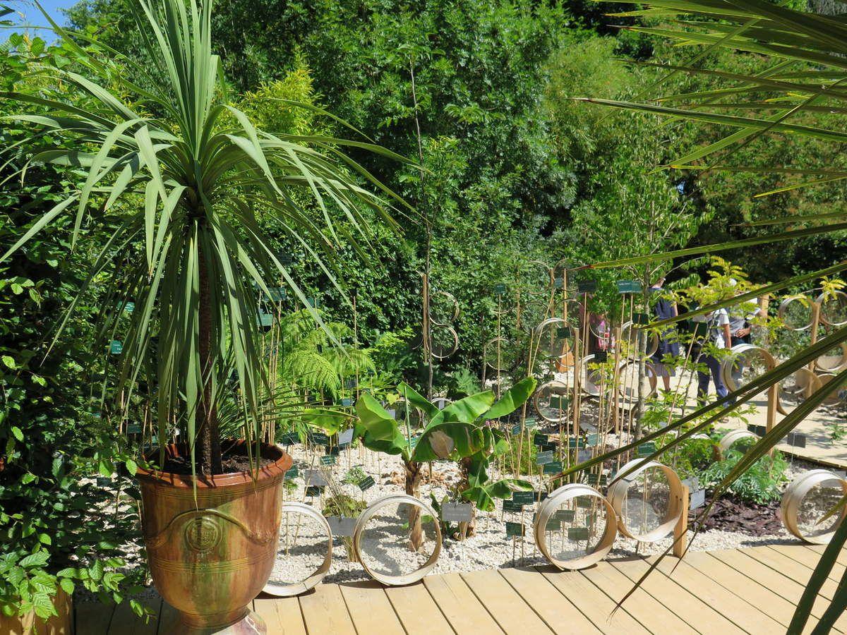 Jardins extraordinaires...la suite
