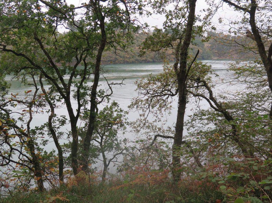 La sauvage beauté des rives de l'Aber