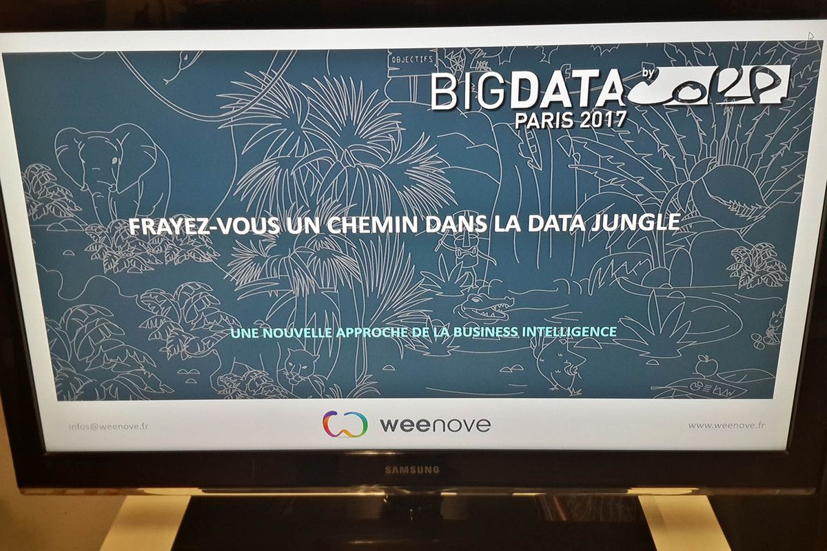 La Jungle du Big Data