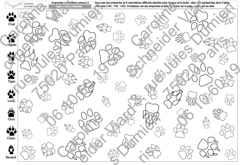 Nouveautés automne 2017 : les planches de repérages empreintes de mammifères