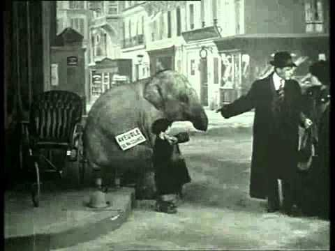 """""""Bout de Zan vole un éléphant"""" : un gamin pique l'éléphanteau d'un cirque, va au resto avec et mendie avec dans la rue. Normal."""