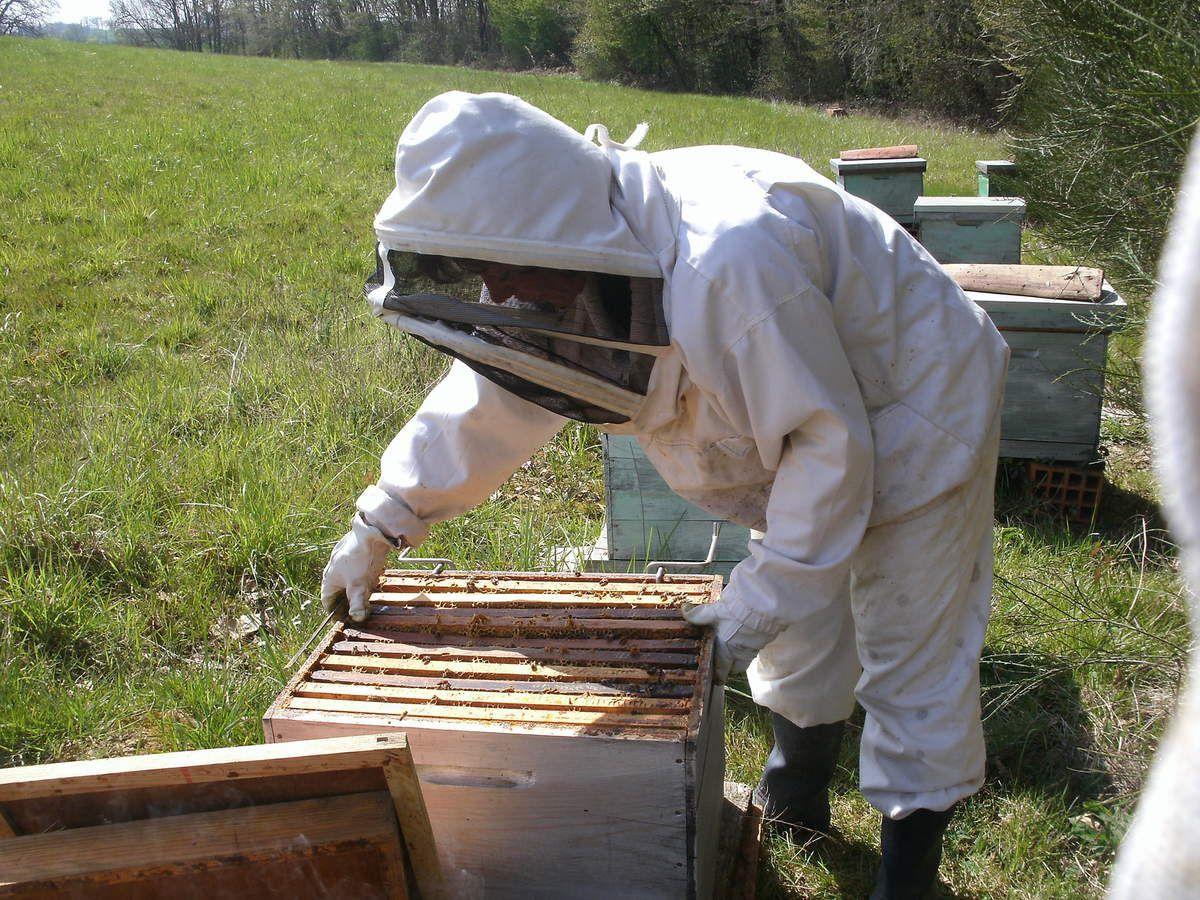Boutique associative Marie Hélène Castay apicultrice amateur