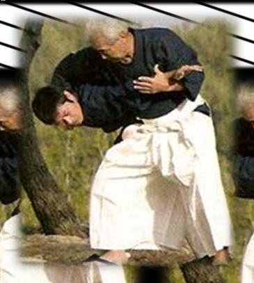 Grand stage avec maître MOCHIZUKI Hiroo les 1 et 2 octobre 2016