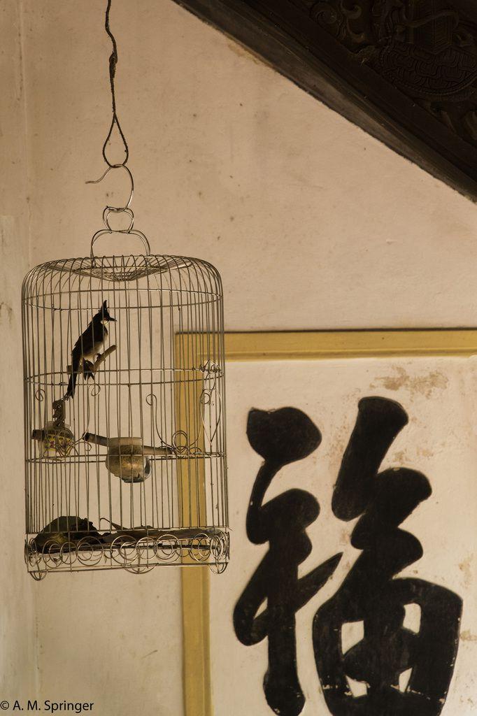 Cage à oiseaux en bambou. Pour les artisans le prix de vente a chuté de 50% et cette activité est en voie de disparition.