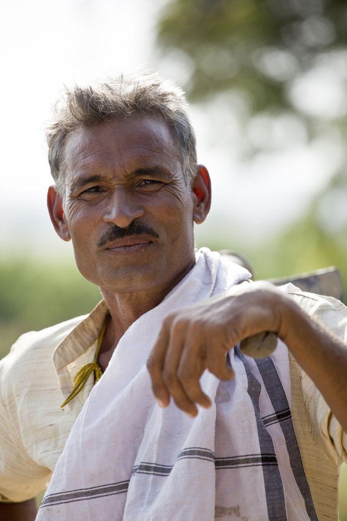 Madhya Pradesh - Morena - fermier