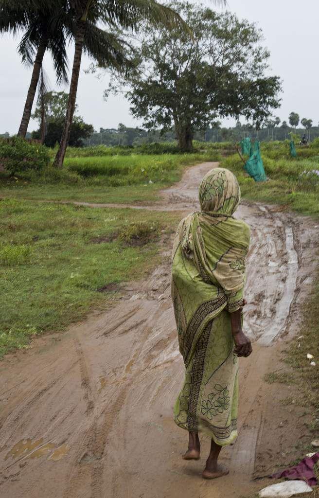 64 yoginis pour miss durga : Inde - Odisha - environs de Bhubaneshwar - Hirarpur