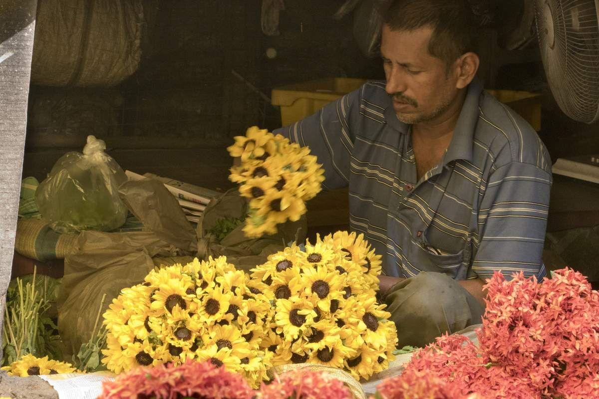 Les fleurs de Kolkata : Inde - West Bengal - Kolkata