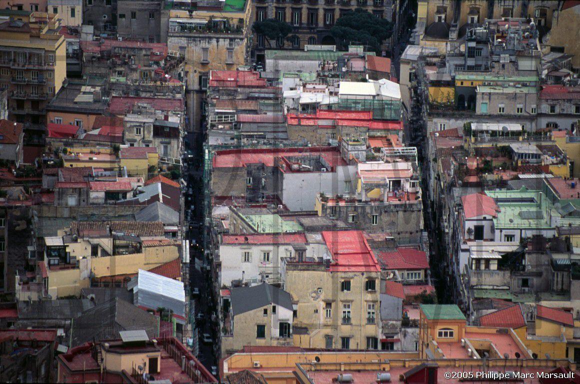 Antonio Menna - L'étrange histoire de l'ours brun abattu dans les quartiers espagnols de Naples.
