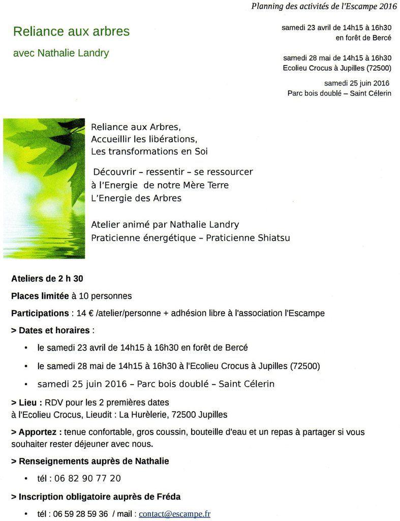 Escampe : &quot&#x3B;Reliance aux arbres&quot&#x3B; avec Nathalie Landry