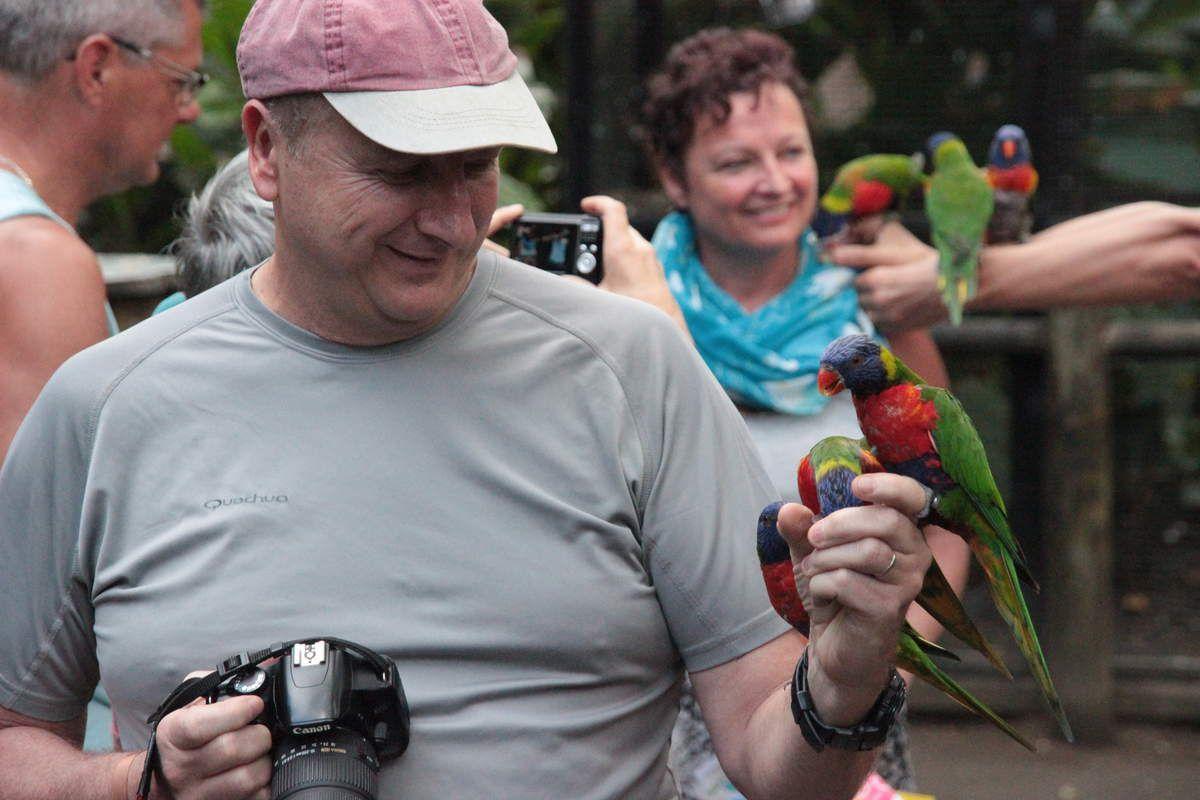 Mardi 10 mars le jardin botanique guadeloupe for Jardin mars 2015