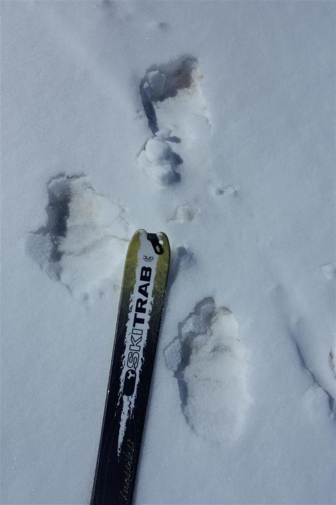 ski exploratoire au Munzur Daglari