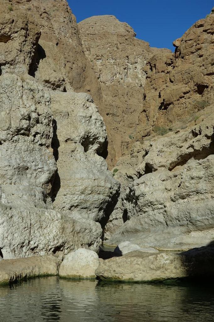 dans les vasques à l'aval de la grotte