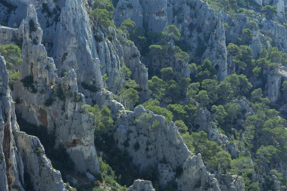 vue sur la dentelle blanche et verte d'En Vau, et les eaux turquoise de la calanque
