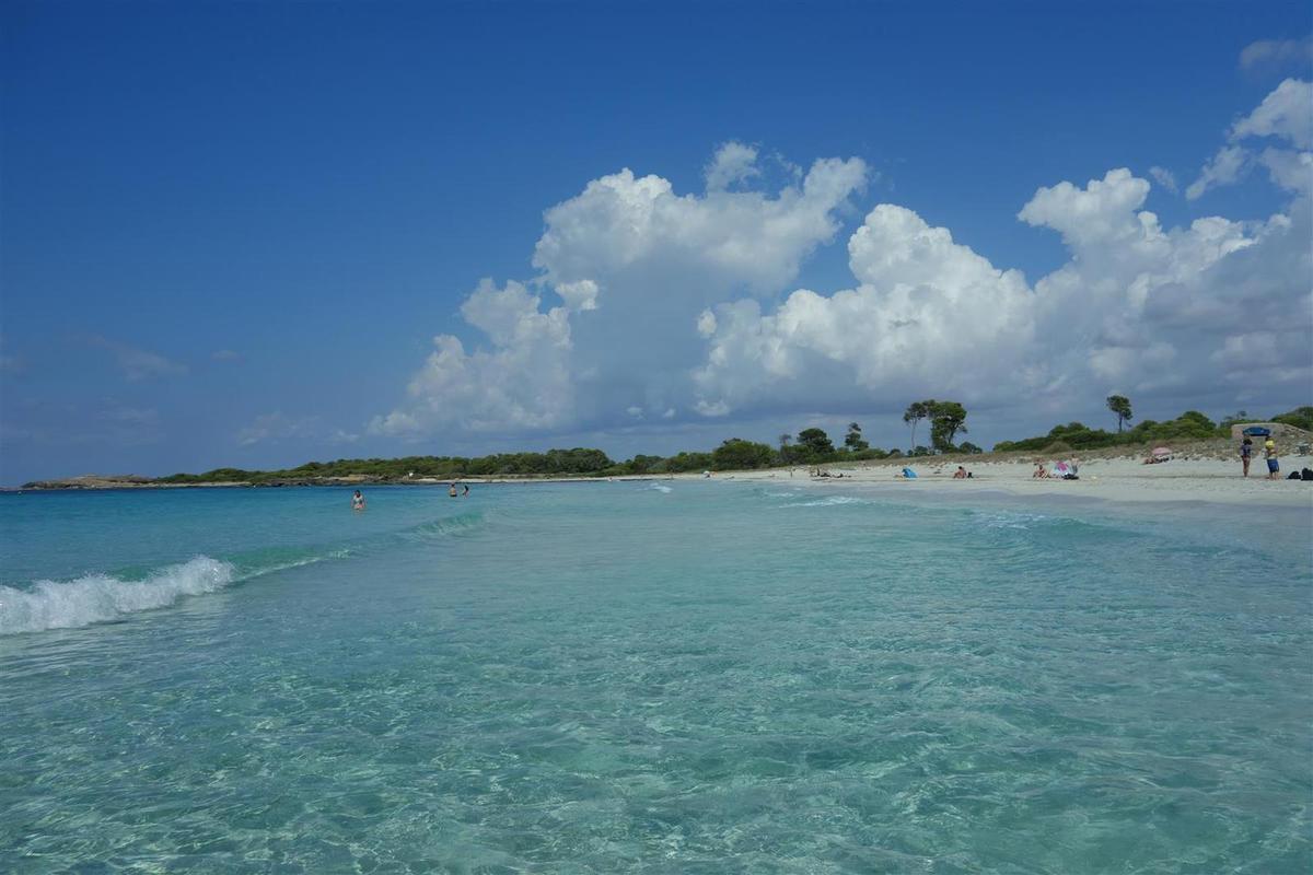 le cadre paradisiaque de la plage