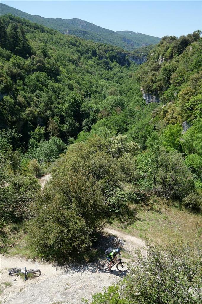 dans la descente versant nord et le long de l'Aigue Brun