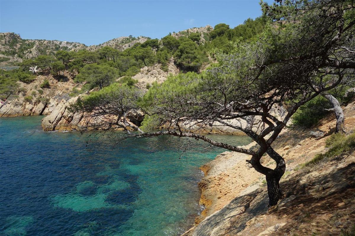 l'anse de Méjean, ses pins, grottes et falaises de grès