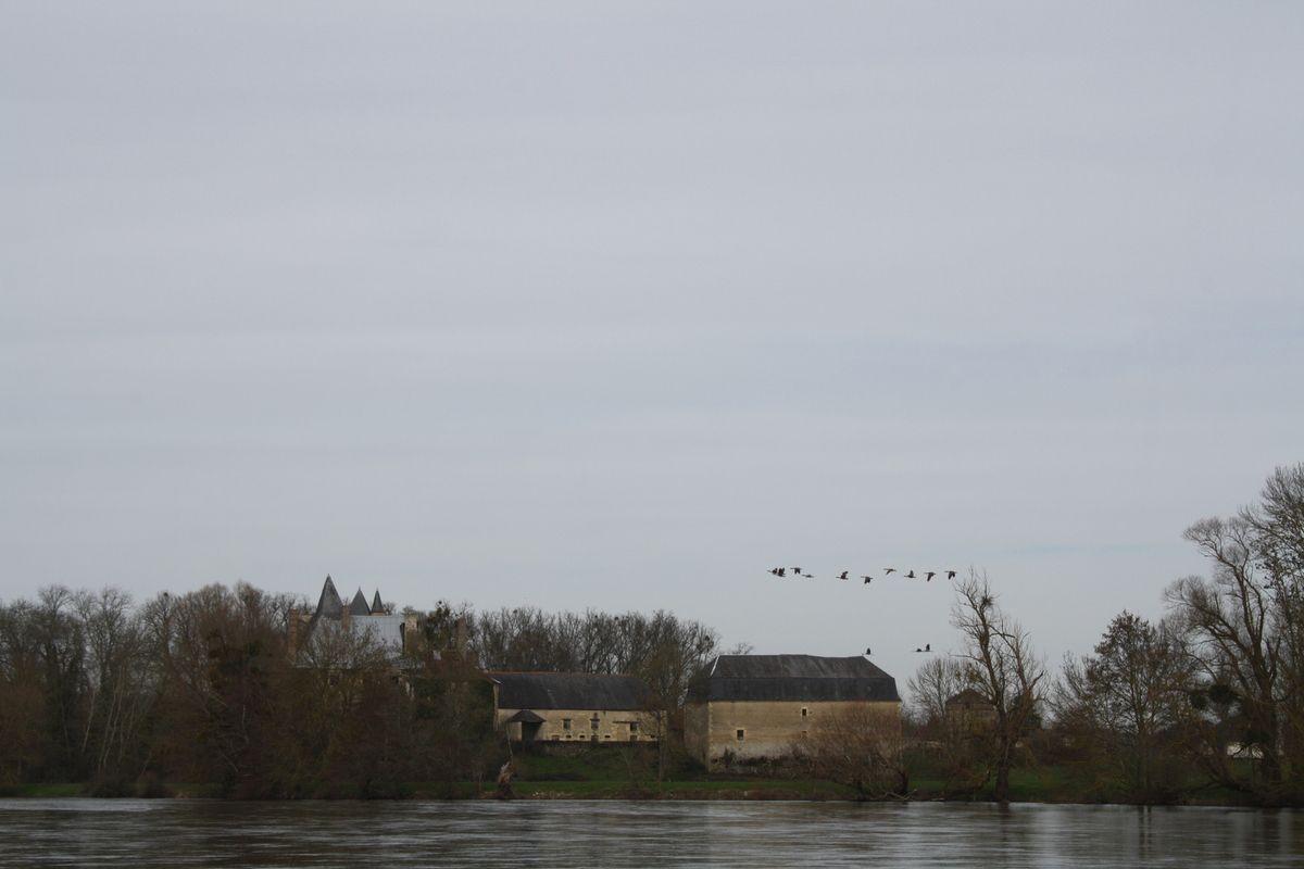 En vue du château de MEAUCE (photo jean-marc duroure)