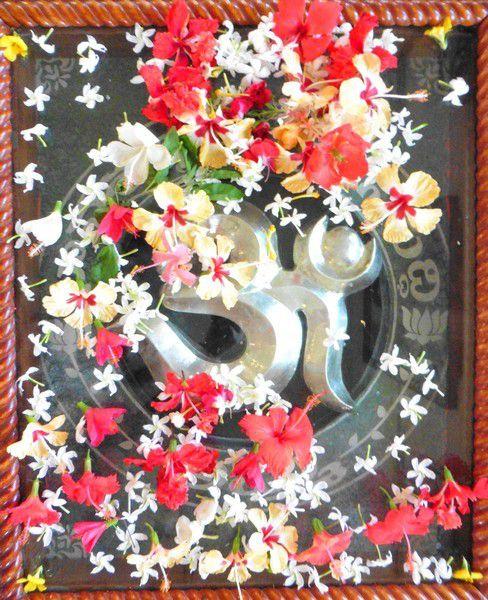 Hibiscus et jasmins ,  sur le dessus de son mausolée ( ou peut-être de l'endroit où on a mis ses cendres , mais en général en Inde les saints sont enterrés )