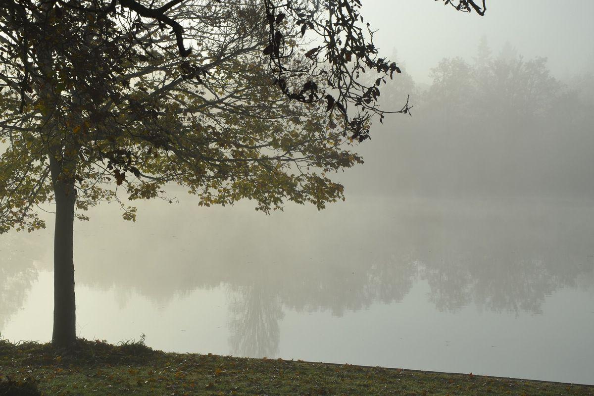 Vivre l'entrée dans l'automne en pleine conscience :  petites pratiques pour prendre soin de soi
