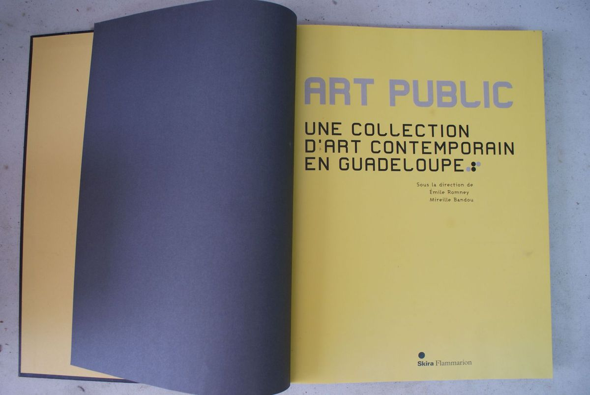 Une Collection d'Art Contemporain en Guadeloupe