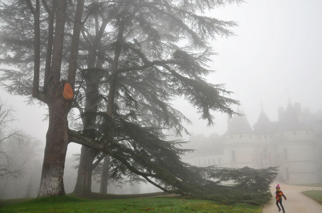 Jour et brouillard, à Chaumont-sur-Loire